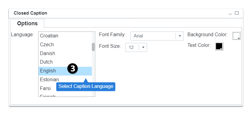 select captions language